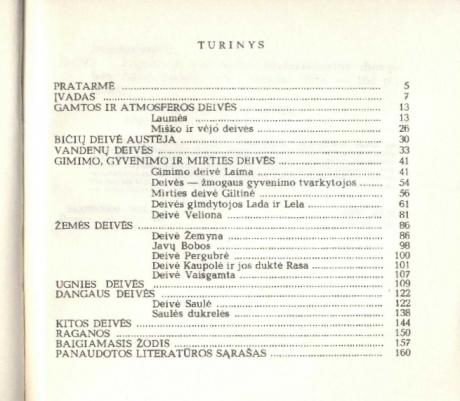 Pagonybė Lietuvoje-Turinys